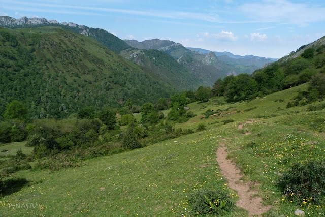 Madada Cureñu y Bosque Degoes - Asturias