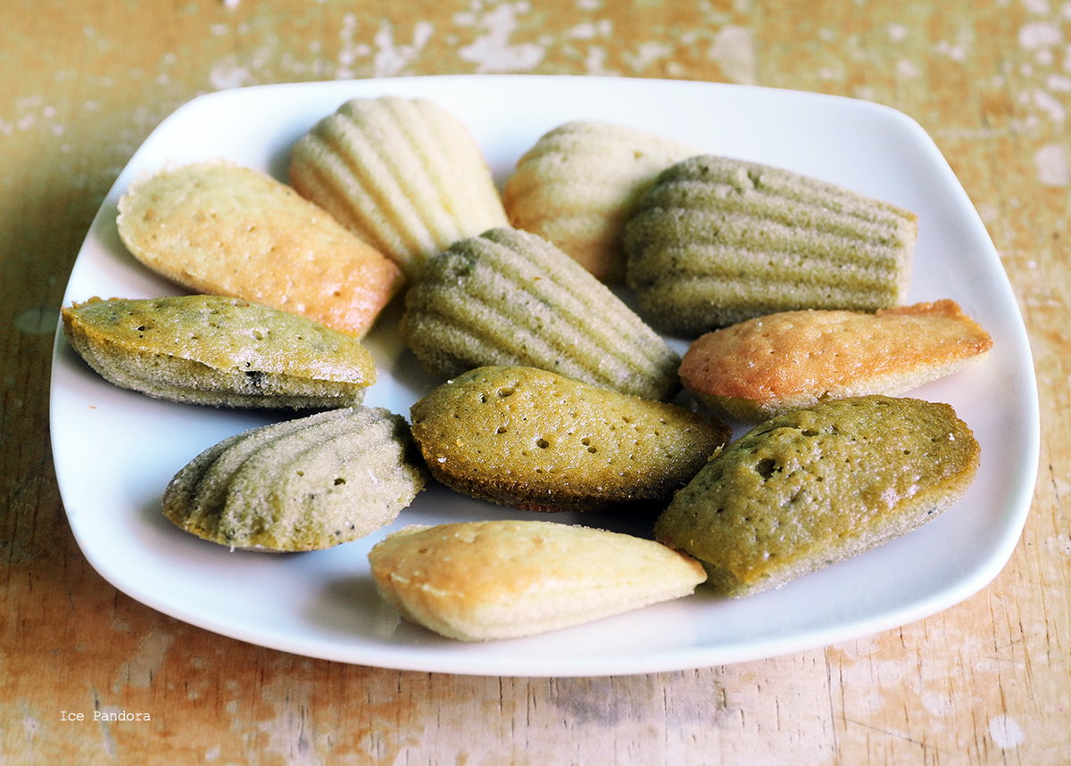 Ice Pandora Project Matcha Green Tea Madeleines