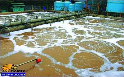 Sửa chữa nhanh chóng hệ thống xử lý nước thải - Công nghệ AFBR
