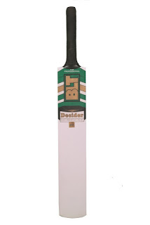 BLT Fighter Cricket Bat