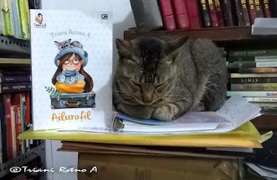Novel Ailurofil