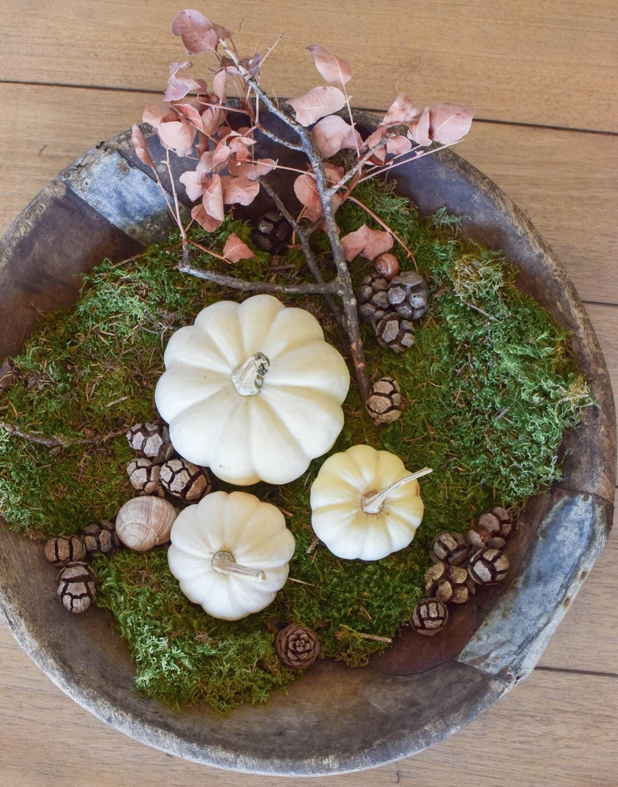Dekoideen mit Kürbis für den Herbst. Kürbisse natürlich dekorieren. Tischdeko, Tisch dekorieren Herbstdeko, herbstliche Deko, Wohnzimmer