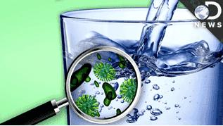 bakteri dalam air minum