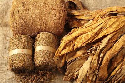 http://tipspetani.blogspot.com/2016/11/informasi-tentang-tanaman-tembakau.html