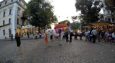 Kolorowy kucyk Odessa