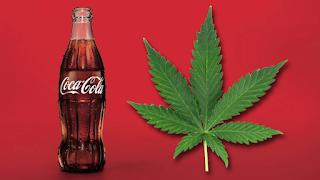 H Coca-Cola ετοιμάζεται να φτιάξει αναψυκτικό με κάνναβη
