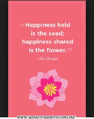 Happiness Held Is The Seed