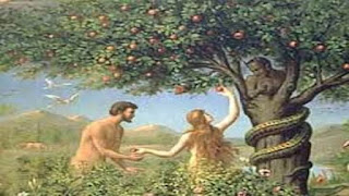 قصص وعبر من الحياة / قصة الشجرة الملعونة في الإسلام