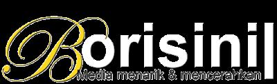 Borisinil