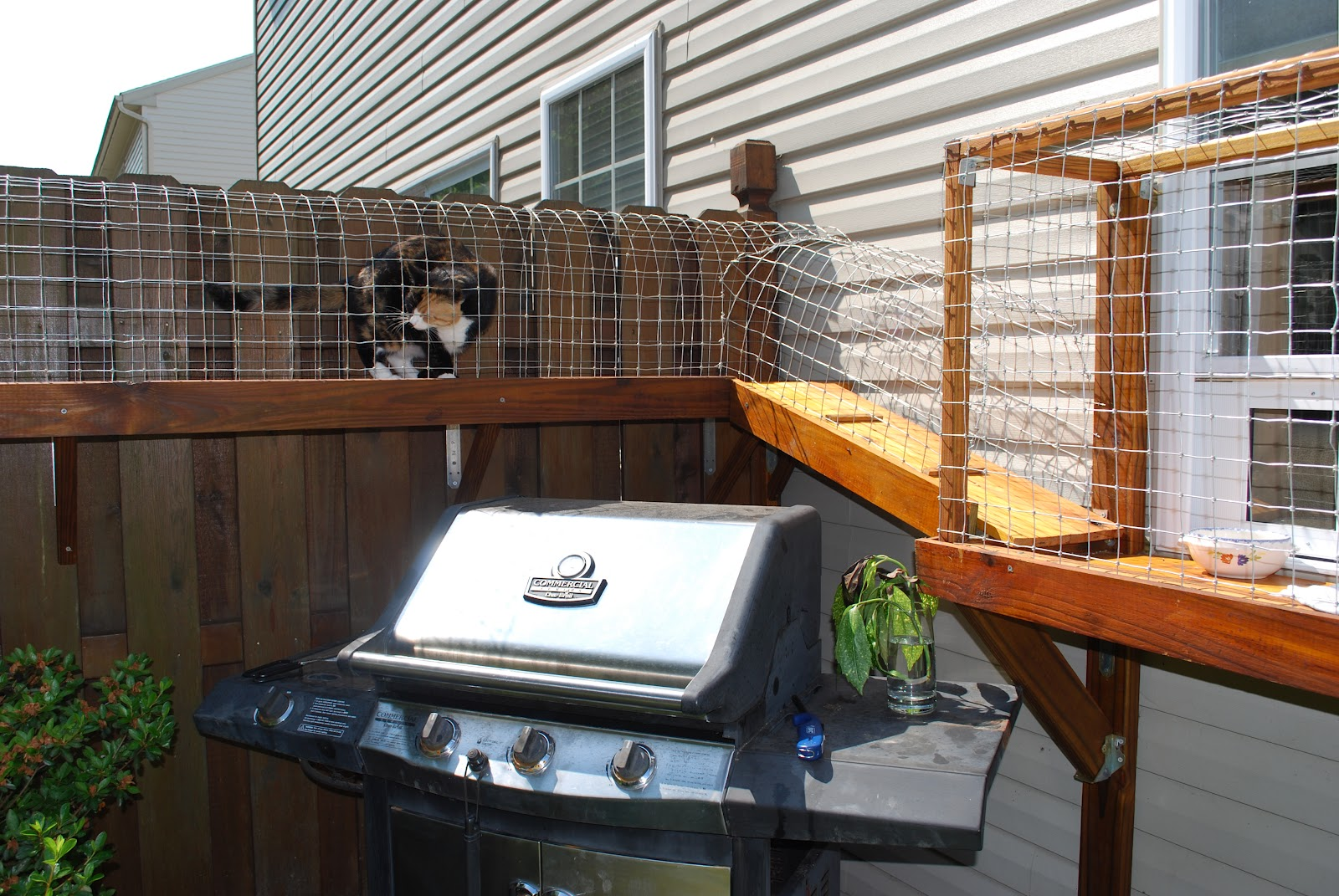 Easy Diy Cat Enclosure To Keep Your Indoor Cats Happy And Safe Exterior Wiring Enclosures