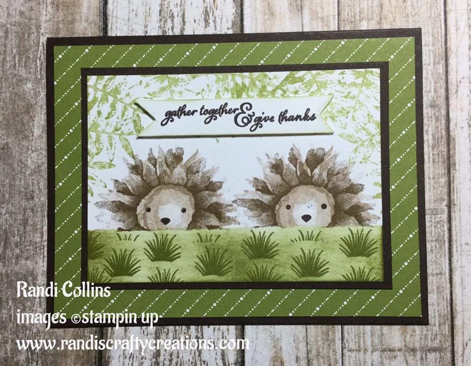 Randi S Crafty Creations Hedgehog Cuteness W Stampin Up Painted Harvest