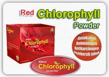 Red Chlorophyll Powder Minuman Kesehatan Alami