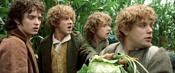 Kumpulan Fakta, Video dan Foto The Lord of the Rings - The Fellowship of the Ring