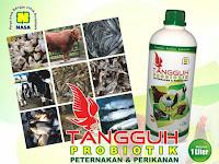 Tangguh Probiotik - Probiotik Paling Laris Di Indonesia