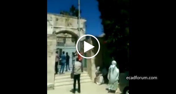 http://4.bp.blogspot.com/-naPRSKjlbaU/V1zW0S7UCwI/AAAAAAAASlE/lf7ihbZ8QmU9ANT8GuUaD2nG-LouIpq4ACK4B/s1600/TPLF-flag-Jerusalem.jpg