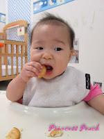 茉莉吃餅乾