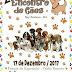 Neste domingo acontece o 2º Encontro de Cães em Ruy Barbosa