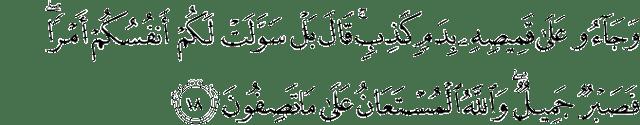 Surah Yusuf Ayat 18