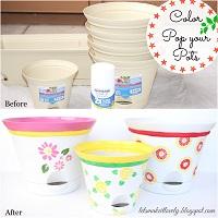 Color Pop your Pots