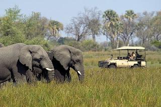 Reservas de Botswana