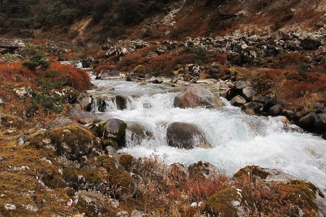Kockchurang Goecha La Trek Sikkim India