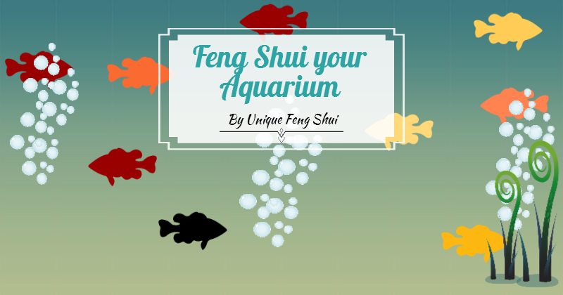 Unique Feng Shui Blog 5 Steps to Feng Shui your Aquarium