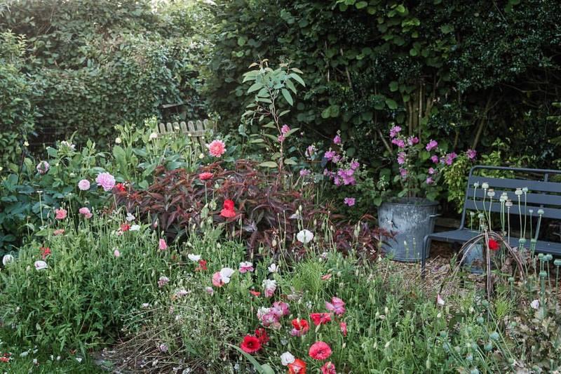 Jardín en la campiña de Normandía