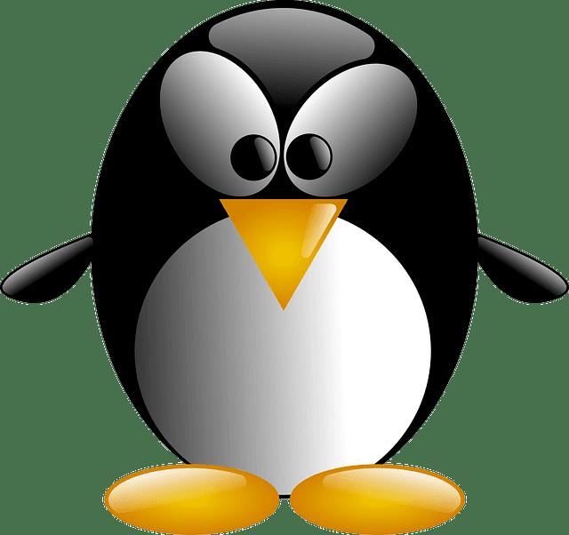 Penguin, Bird