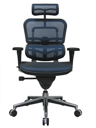 Eurotech Seating Ergohuman Chair Review