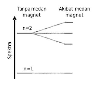 Spektrum atom hidrogen terurai dalam medan magnet (efek Zeeman)