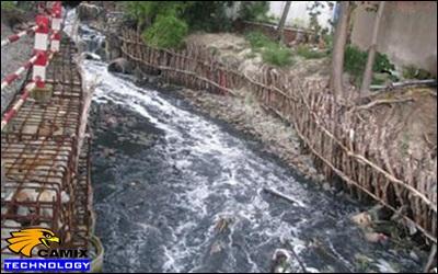 Công ty tư vấn xử lý nước thải nhà máy chế biến thủy hải sản - Hiện trạng môi trường nuôi trồng thủy sản