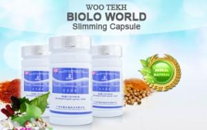 Menurunkan Berat Badan Dengan Biolo