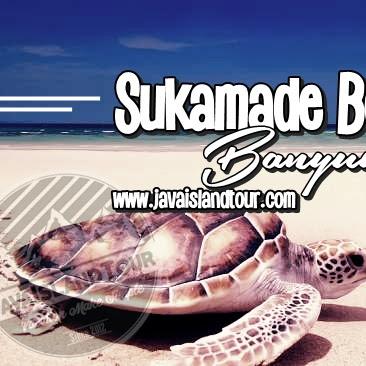 Sukamade Beach Banyuwangi East Java