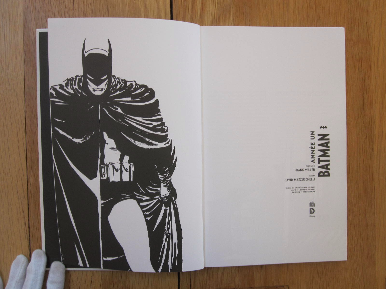 batman year one thesis For those not in the know, david mazzucchelli was the arist on batman: year one, one of the most realistic looks at batman in comics click to expand elaborate on this thesis.