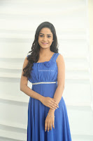 Divya Nandini stunning Beauty in blue Dress at Trendz Exhibition Launch ~  Celebrities Galleries 054.JPG