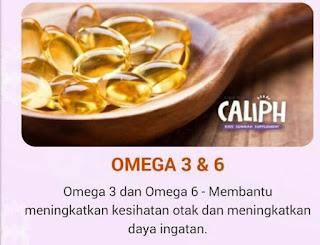 Omega 3 dan 6