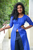 Gayatri sizzling photo shoot-thumbnail-13