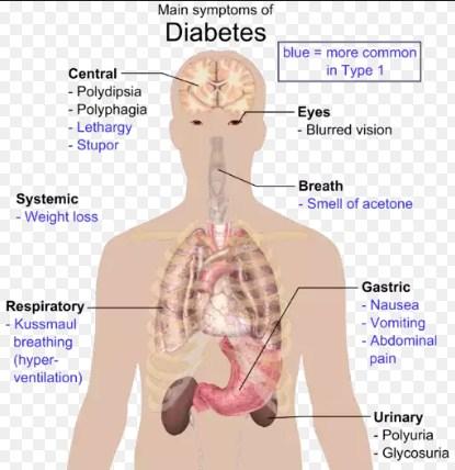 """""""penderita diabetes"""""""