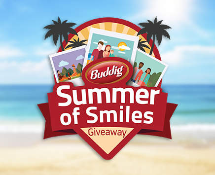 Buddig wants you to make more than a sandwich this summer! Make summer smiles and share on their Facebook page for your chance to win one of over 100 Visa Gift Cards worth $25 each!