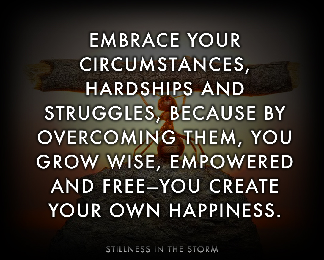 """Embrace your circumstances"" (Image) 