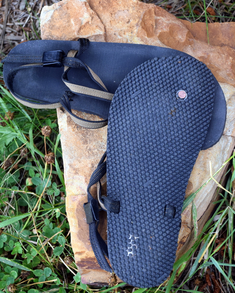 896178c1fe79 Barefoot Inclined  Summer s last hurrah... chee... Earth Runners ...