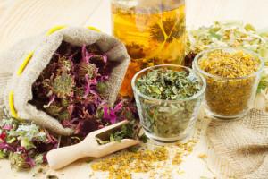 remedios caseros plantas medicinales para cistitis