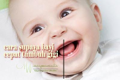 cara supaya bayi cepat tumbuh gigi