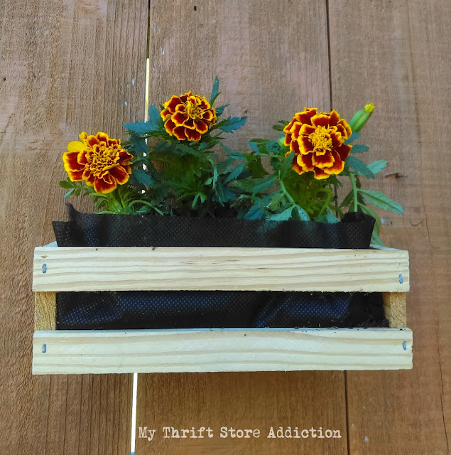15 minute repurposed mini crate planters