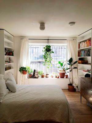 plantas-no-quarto-abrir-janela