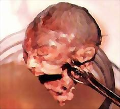 Image result for aborted babies