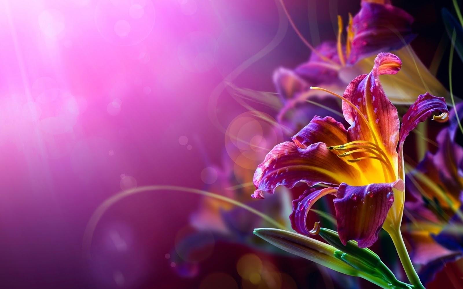 Les plus beau fond ecran fleurs fond ecran pc for Fond ecran free