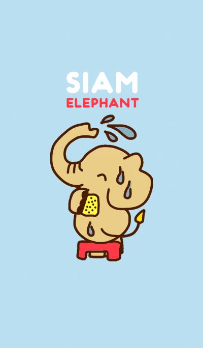 Siam Elephant