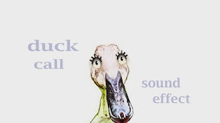 how duck sounds