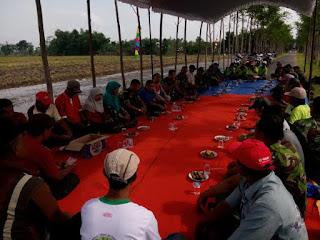 Selamatan Panen Padi Dan Sosialisasi Serapan Gabah Petani Di Purwoasri Kediri